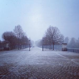 fontainebleau sous la neige