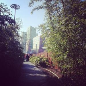 jardin des géants1